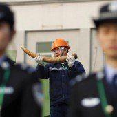 Chinesische Behörden vernichteten tonnenweise Elfenbein