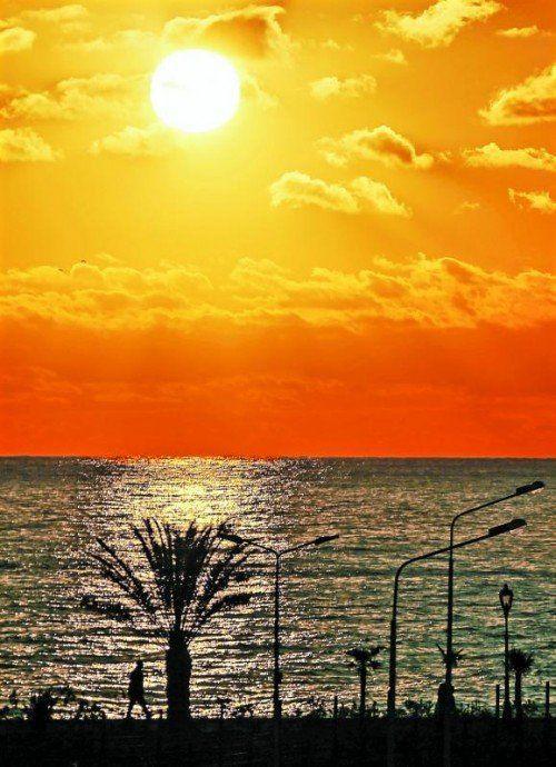 Die Idylle am Schwarzen Meer trügt. In und um Sotschi wird noch an vielen Baustellen gearbeitet. Foto: ap