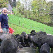 Tierisches Pensionistenleben