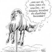 Camel- Raucher!