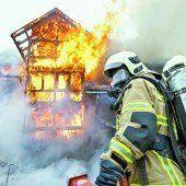 In den Flammen geboren und gerettet