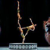 Magischer Zirkus: Afrika! Afrika!