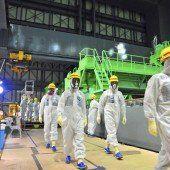 Erneute Panne in der Atomruine Fukushima