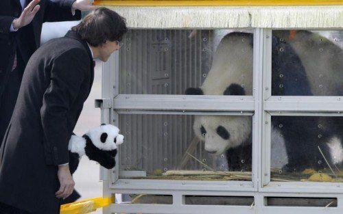 Premierminister Elio Di Rupo begrüßte die Tiere.  Foto: Reuters