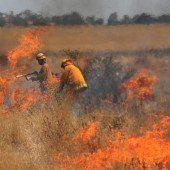 Kampf gegen Buschbrände