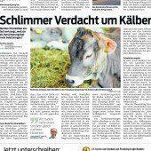 Versicherung zahlte für 1289 Rinder