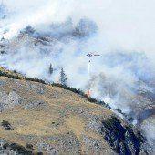 Zigarette löst Waldbrand aus