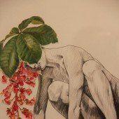 Bilder wie Blumen pflücken