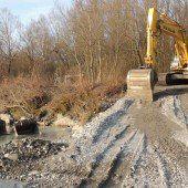 Bregenzerach: Mündung wird ausgebaggert