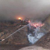 Großeinsatz bei Brand in Holzschnitzeldepot