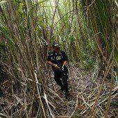 Drogenhandel lässt den Regenwald schrumpfen