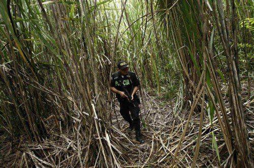 Die besetzten Ländereien werden von den Drogenhändlern genutzt, um illegale Landepisten anzulegen. FOTO: AP