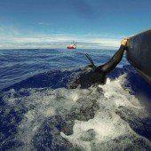 Kein neues Signal bei Suche nach Flug MH370