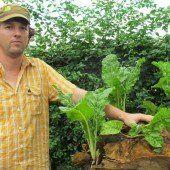 Bio-Landwirten in Afrika helfen