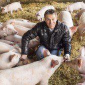Jetzt gleich anmelden zum VN-Tierschutzpreis 2014