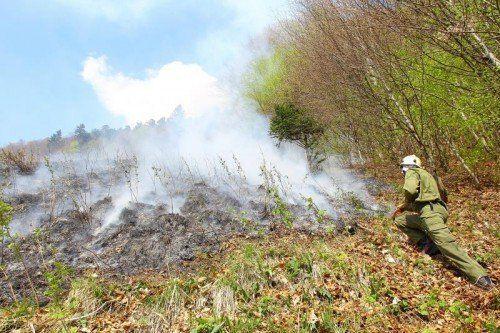 Brand; Waldbrand Sonntag Prazelle Türtsch; gegen 15.00 Uhr; Großeinsatz der Einsatzkräfte;