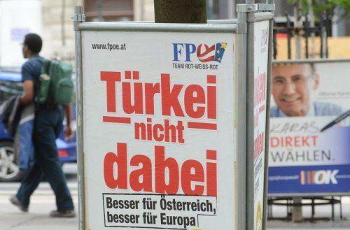 Die Wahlplakate erregen mancherorts beträchtlichen Ärger. foto: apa