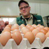 Gegen US-Klonfleisch und Chlor-Hühnchen