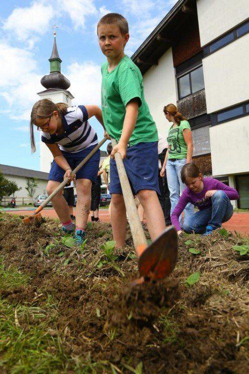 Im Schulgarten lernen. Foto: Bernd Hofmeister