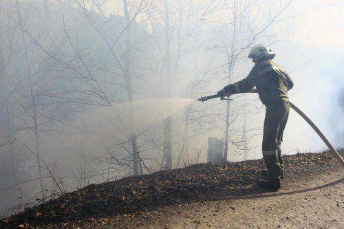 Waldbrand Röthis Bereich Höll; gegen 17.00 Uhr