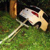 Betrunken gegen Baum