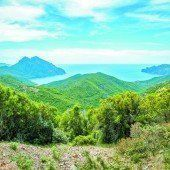 Die wunderbare Natur auf Korsika