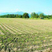 Glyphosat auf unseren Vorarlberger Feldern?
