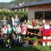 Kleine Nachwuchs-Gärtner dürfen sich über Bio-Gemüsekiste freuen
