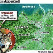 Der Wolf ist im Appenzell