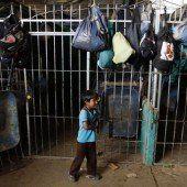 Kinderarbeit in Bolivien ab zehn Jahren erlaubt