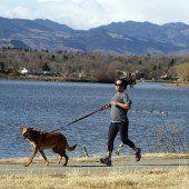 Kurzes Laufen ebenso effektiv wie Joggen