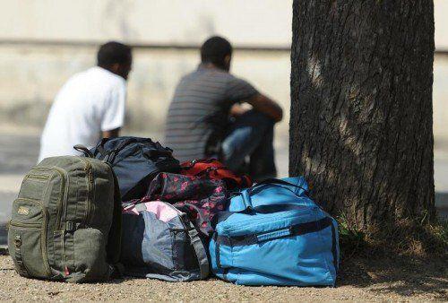 Viele Asylwerber wollen Beitrag leisten, so Schwertner. FOTO: APA