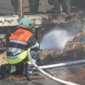 Hackschnitzel in Flammen