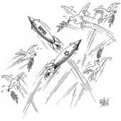 Gaza-Luftraum-Kollisionen!