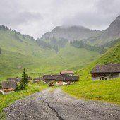 Den Alpsommer in Vorarlberg hautnah erleben