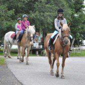 Erlebniswoche mit Pferden