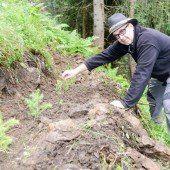 Tue dem Wald Gutes