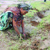 Gegen die Bodenerosion