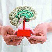 Belastung durch neurologische Erkrankungen unterschätzt