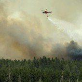 Schweden: Waldbrand breitet sich rasend aus