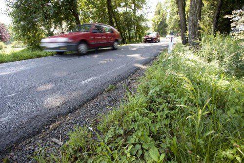 Die Z-Variante sieht eine Straße durchs Ried mit weitestgehender Untertunnelung vor, die beim Knoten Dornbirn Nord ihren Anfang nimmt. VN/Hartinger