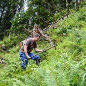 Gute Taten für unseren Wald