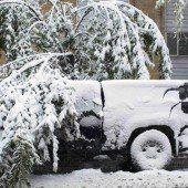 Erster Schnee in Calgary