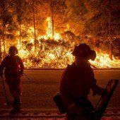 Waldbrände bedrohen Hunderte Häuser