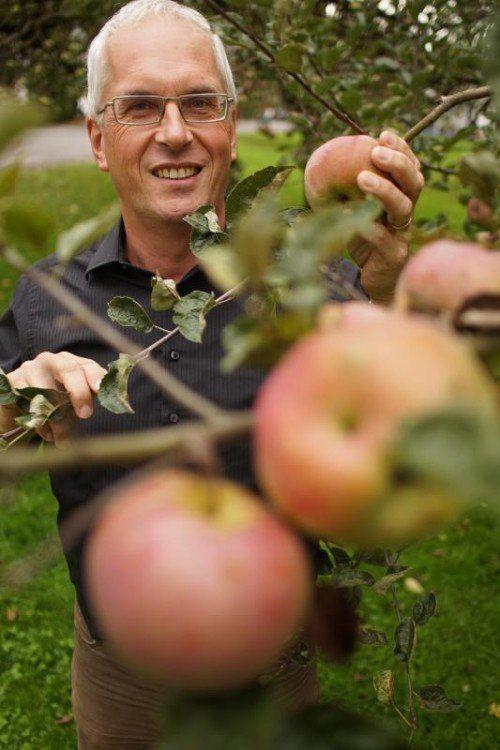 Die Zeit der Äpfel ist auch die Zeit von Ulrich Höfert. Foto: VN/Hartinger