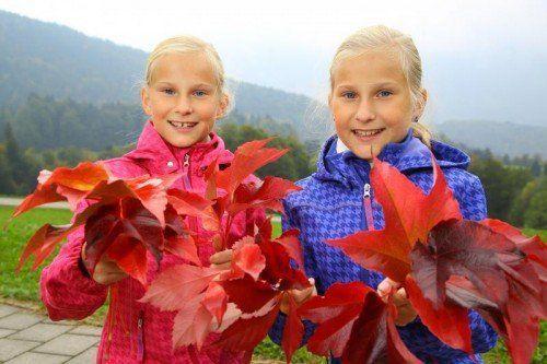 Die Zwillinge Laura und Alina (11) haben die bunten Freuden des Herbstes schon für sich entdeckt. VN/hb