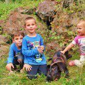 XL-Hundebaby Hugo auf Entdeckungstour im Hinterwald