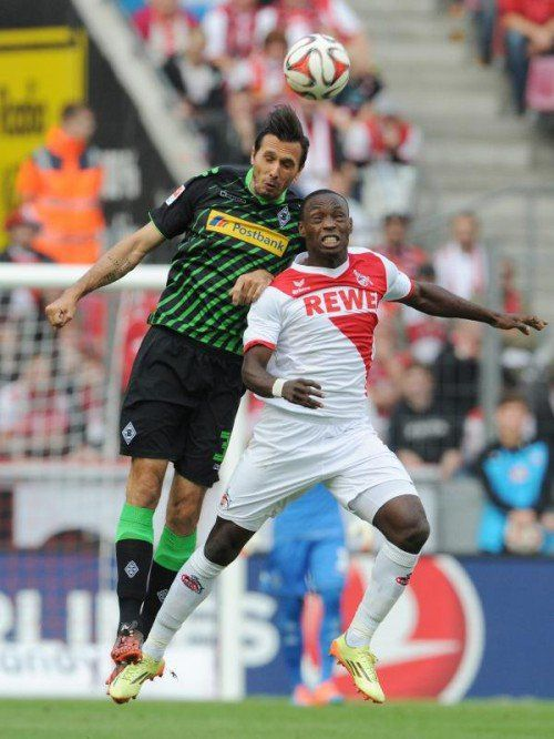 KOELN,GERMANY,21.SEP.14 - SOCCER - DFL, 1. FC Koeln vs Borussia Moenchengladbach. Image shows Martin Stranzl (Moenchengladbach) and Anthony Ujah (Koeln). Photo: GEPA pictures/ Witters/ Uwe Speck - ATTENTION - COPYRIGHT FOR AUSTRIAN CLIENTS ONLY