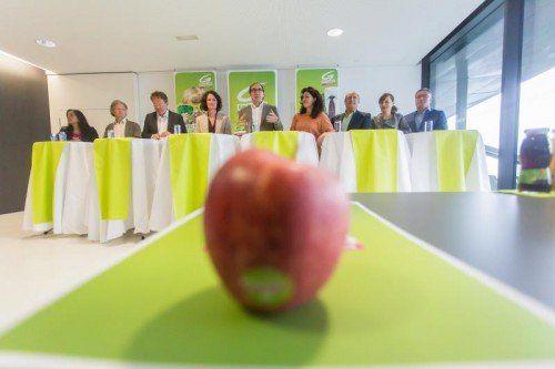 """""""Regierungs-West-Achse fortsetzen"""": Spitzen der Grünen aus Bundesländern unterstützen Vorarlberger Parteikollegen. Foto: VN/Steurer"""