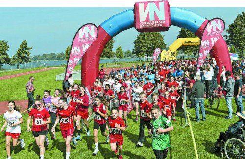 Traumhafte Bedingungen herrschten beim Harder Stundenlauf, an dem sich fast 400 Läufer beteiligten.  Fotos: vn/Stiplovsek